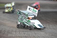 Adrenaline Series Kart Action